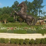 texarkana-landscaping2