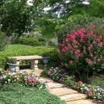texarkana-landscaping9